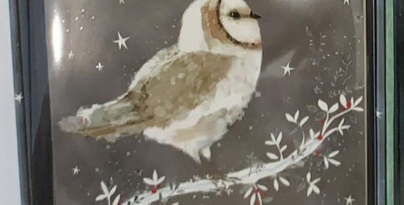 Starry Night Owl Box of 20 Christmas cards