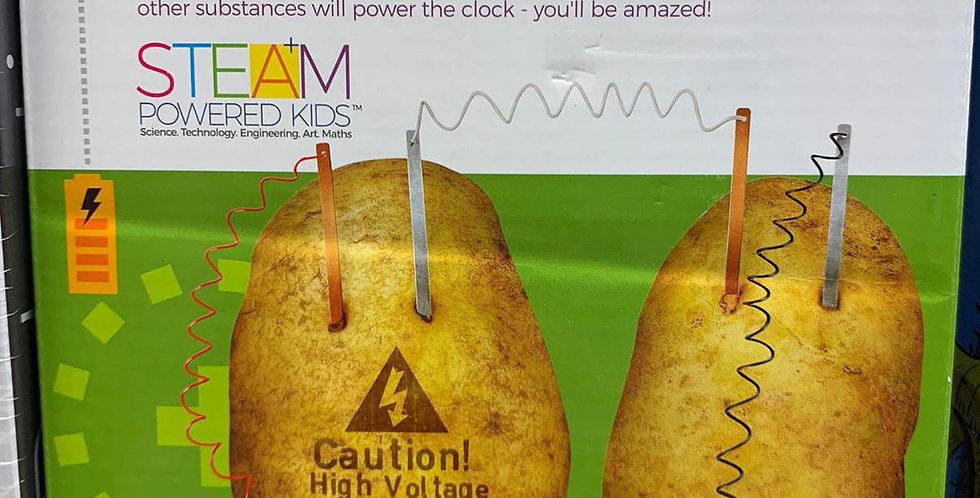 Green Science: Potato Clock