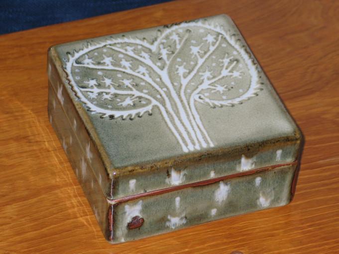 2005 box tree pattern.JPG