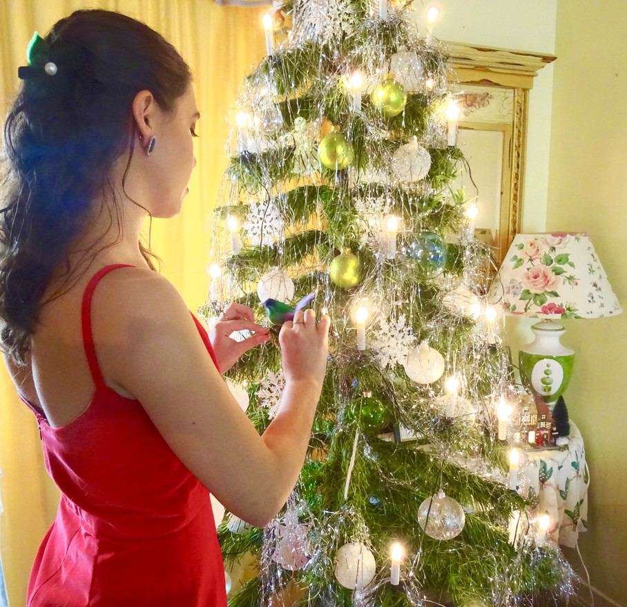 CHRISTMAS IN RED VELVET