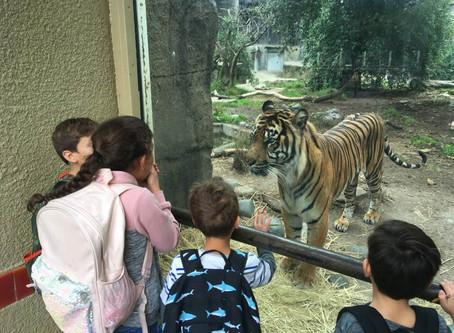 WCS San Francisco Zoo Trip