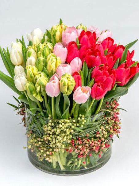 Mademoiselle Tulip