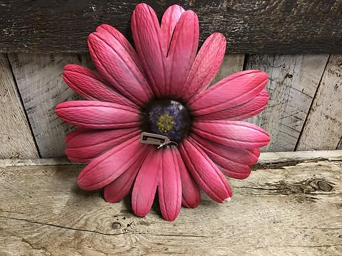 """Pink Daisy 10"""" indoor/outdoor"""