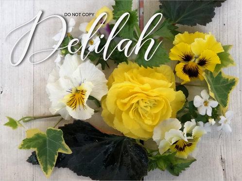 Delilah - Envee Kit