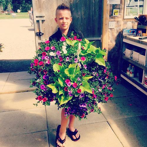 Clayton's Wildberry Mix Hanging Basket