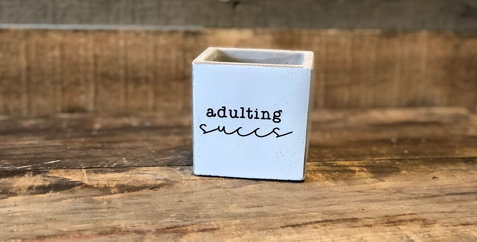 """adulting succs 3"""" with succulent"""