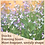 Thumbnail: Stock Evening Scented Mix 6 pack