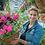 """Thumbnail: Verbena Empress Pink Charme 3.5"""" pot"""