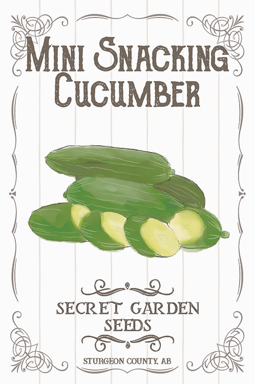 Snacking Cucumber