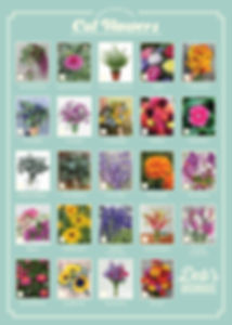 cutflowers 5x7.jpg