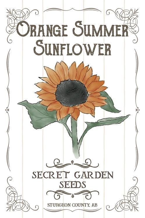 Orange Summer Sunflower