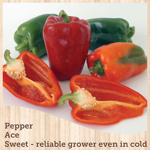 "Pepper Ace 3.5"" pot"