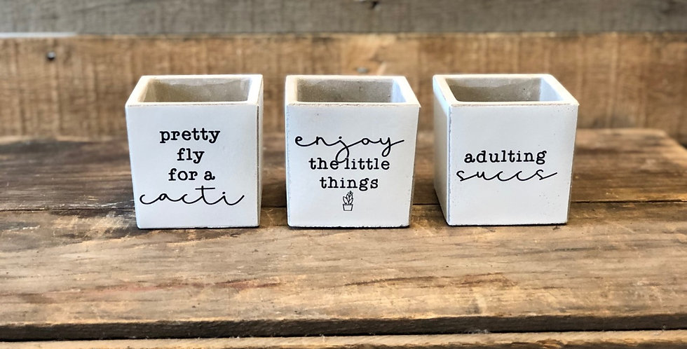 "Set of 3 Quote Planters 3"" with succulent"