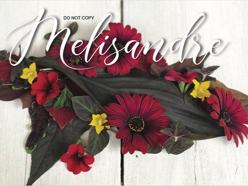 Melisandre - Envee Kit