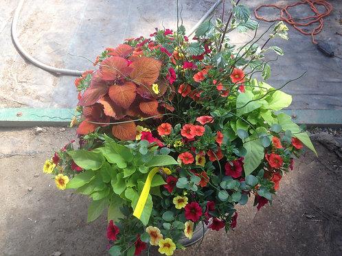 Autumn Colours Bronze Planter