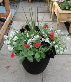black red white planter_edited