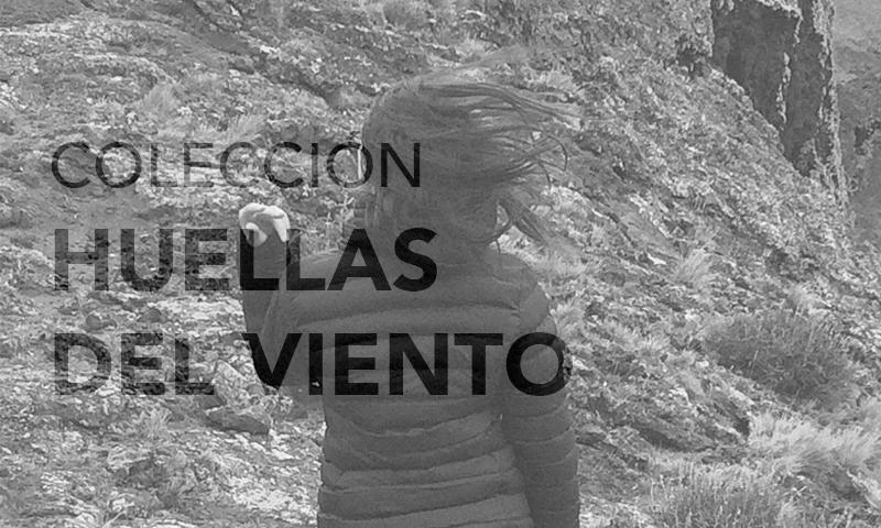 Patricia Iglesias - joyería contemporánea chilena - joyas de autor en Punta Arenas - Patagonia