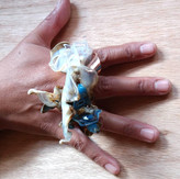 Copia feliz del Edén anillo  ph: Pedro Lizana