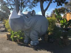 10' Rhino