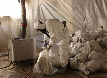 Finding Asbestos In The Home