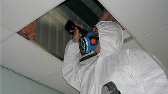 Asbestos-Collction-Near-Me