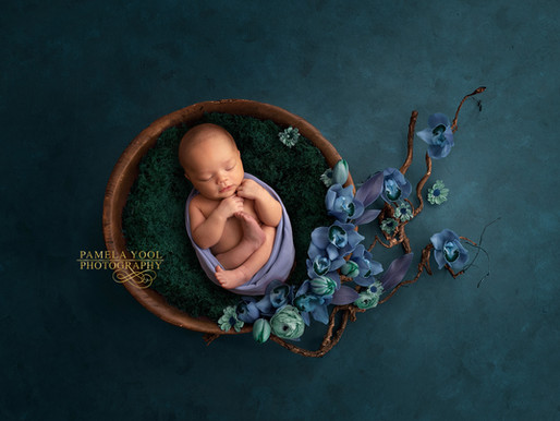 Fine Art Newborn Photography in Studio - Baby Kyra, 10 days old