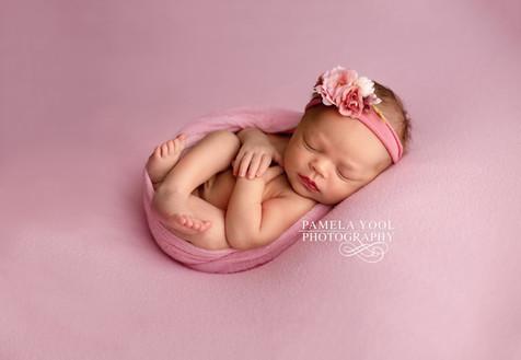 Best Newborn Baby Girl in Pink Photography