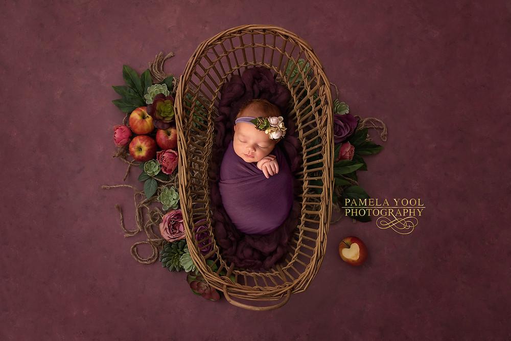 Voted Best Newborn and Family Photographer Toronto