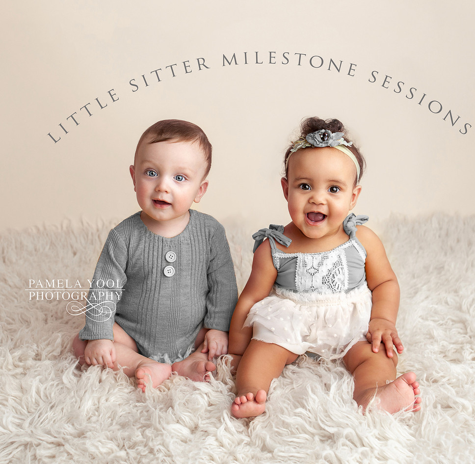 Little Sitter Milestone Sessions
