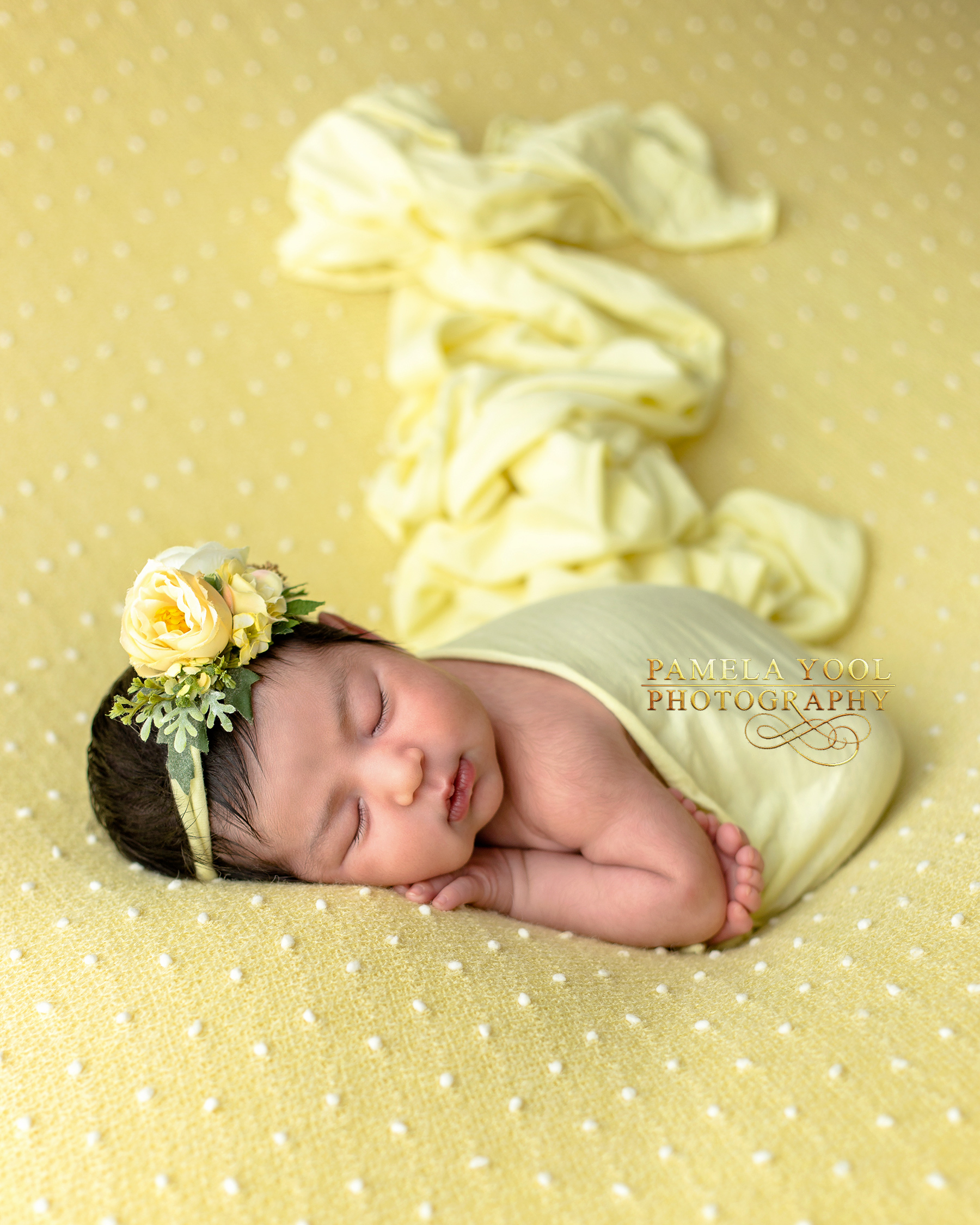 Toronto Newborn Studio Photographer