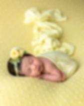 Pamela-Yool-Photography-7130-Logo.jpg