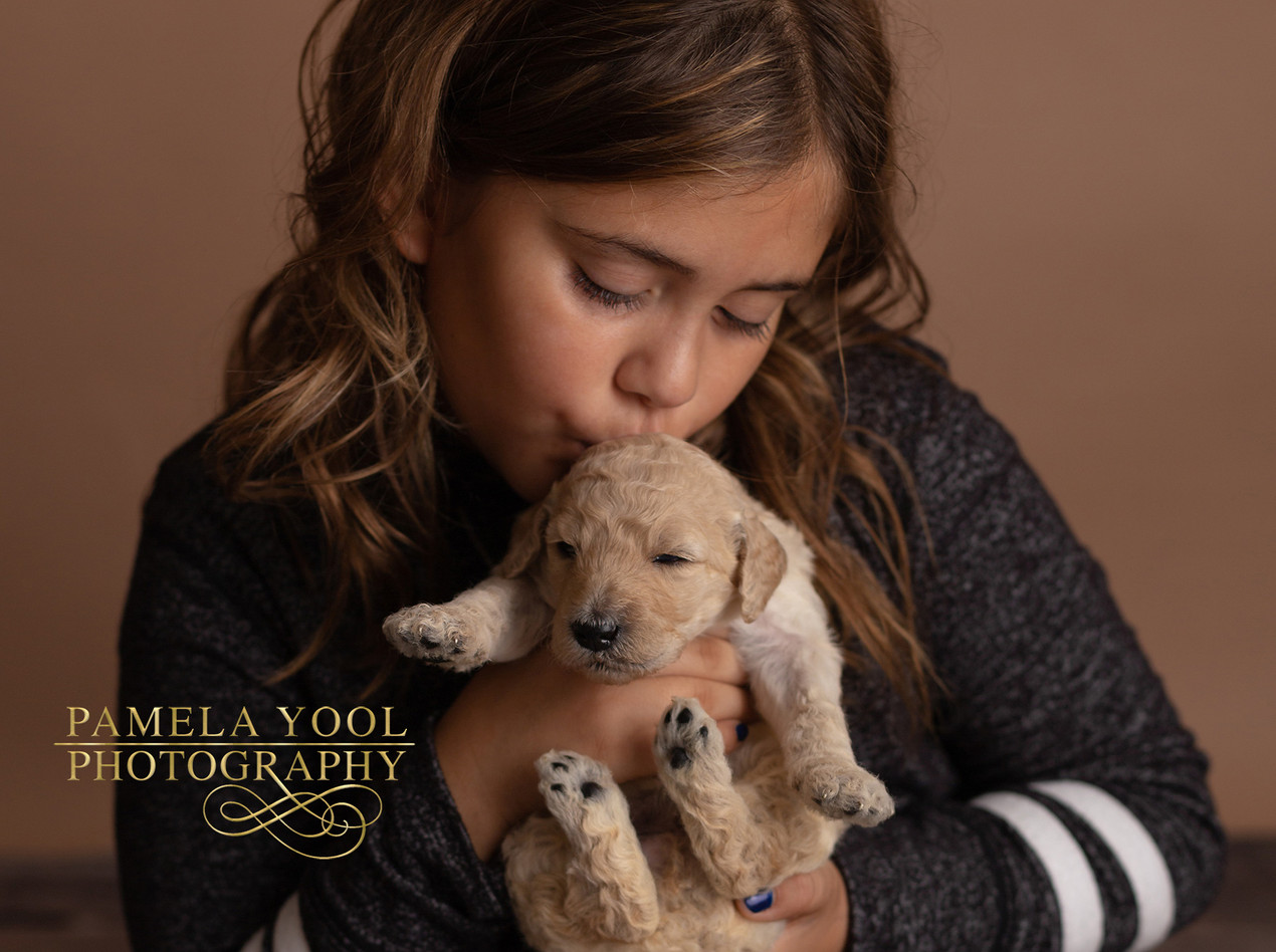 Puppy Dog Photoshoot Toronto