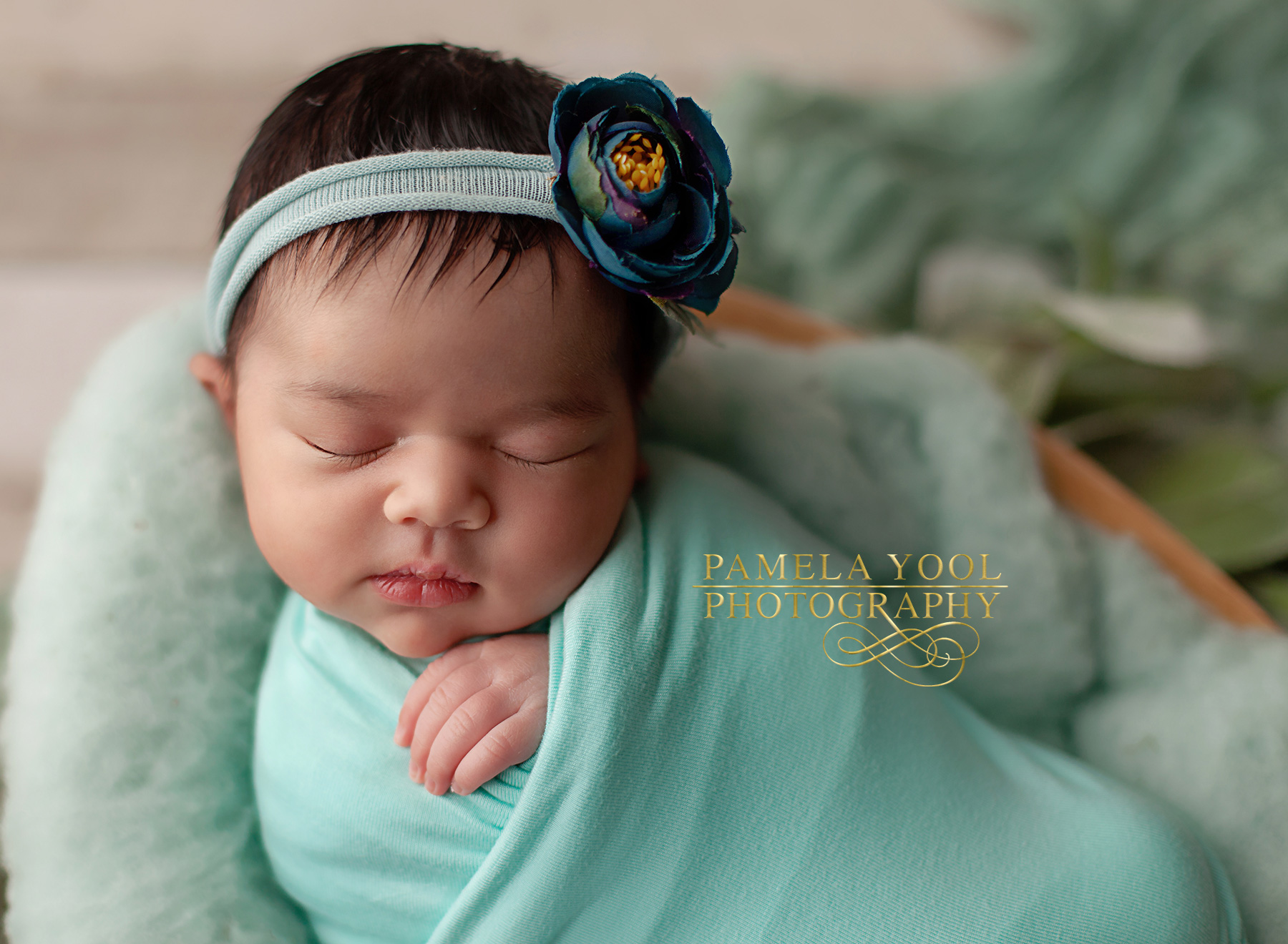 Toronto Newborn Photographer 1