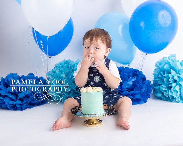 One year old first Birthday Portraits Cake Smash