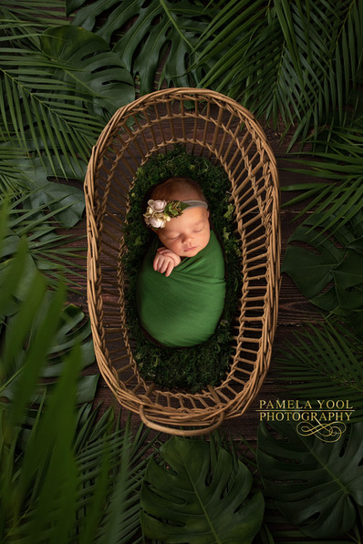 Newborn Baby in Bassinet Toronto Photography