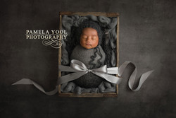 Newborn photographer Toronto 5