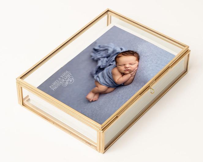 Glass and Brass Photo Box