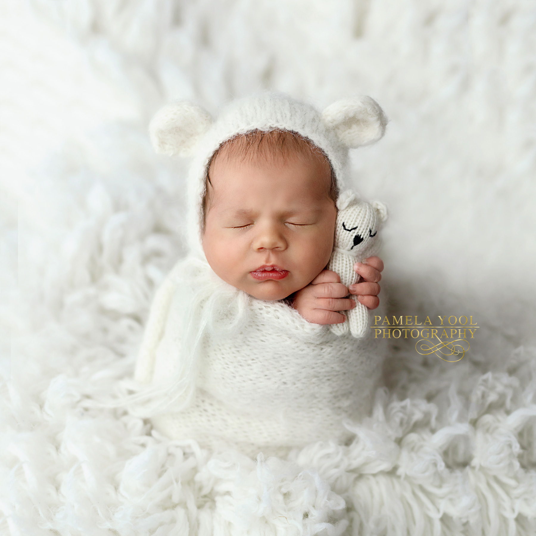 Toronto Newborn Baby Photographer
