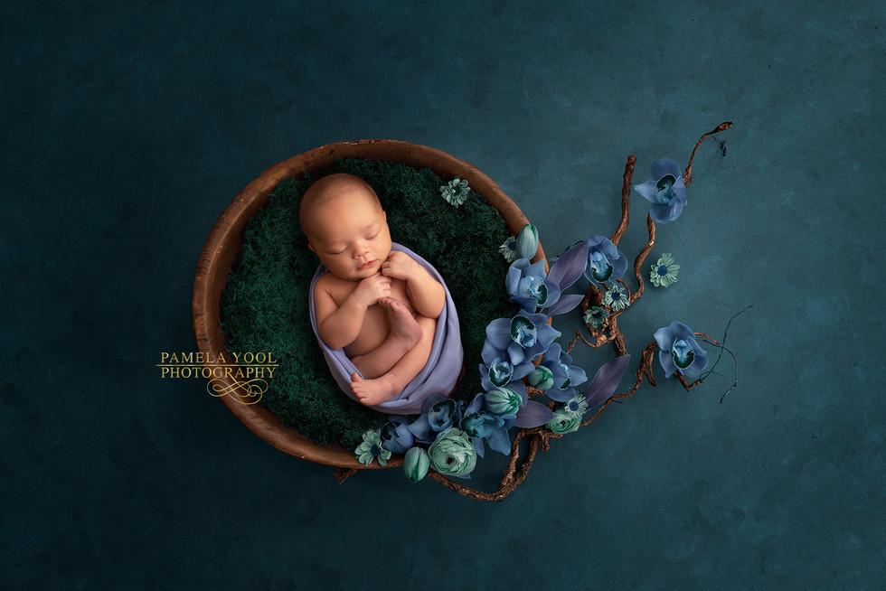 Unique Newborn Photography Toronto