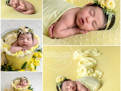 Baby Julia  - Toronto Newborn Photographer