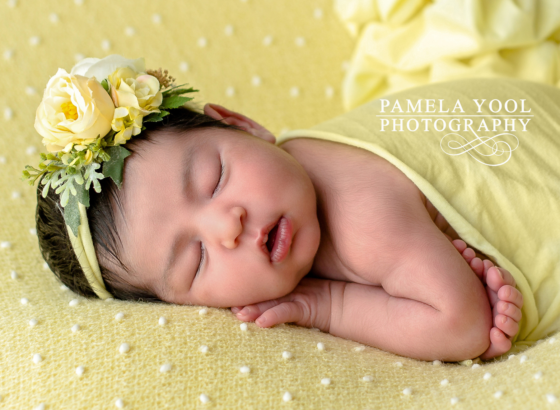 Best newborn photographer toronto2