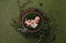 Baby Ivy Portrait Toronto