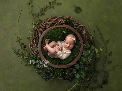 Baby Ivy's First Newborn Portraits