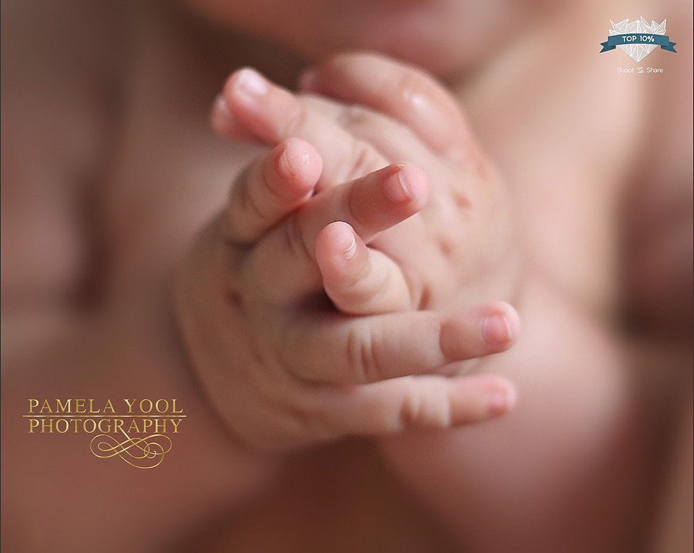 Shoot and Share 2019 Contest - Babies & Toddlers Top 10%: 2,472 place out of 41,322 photos