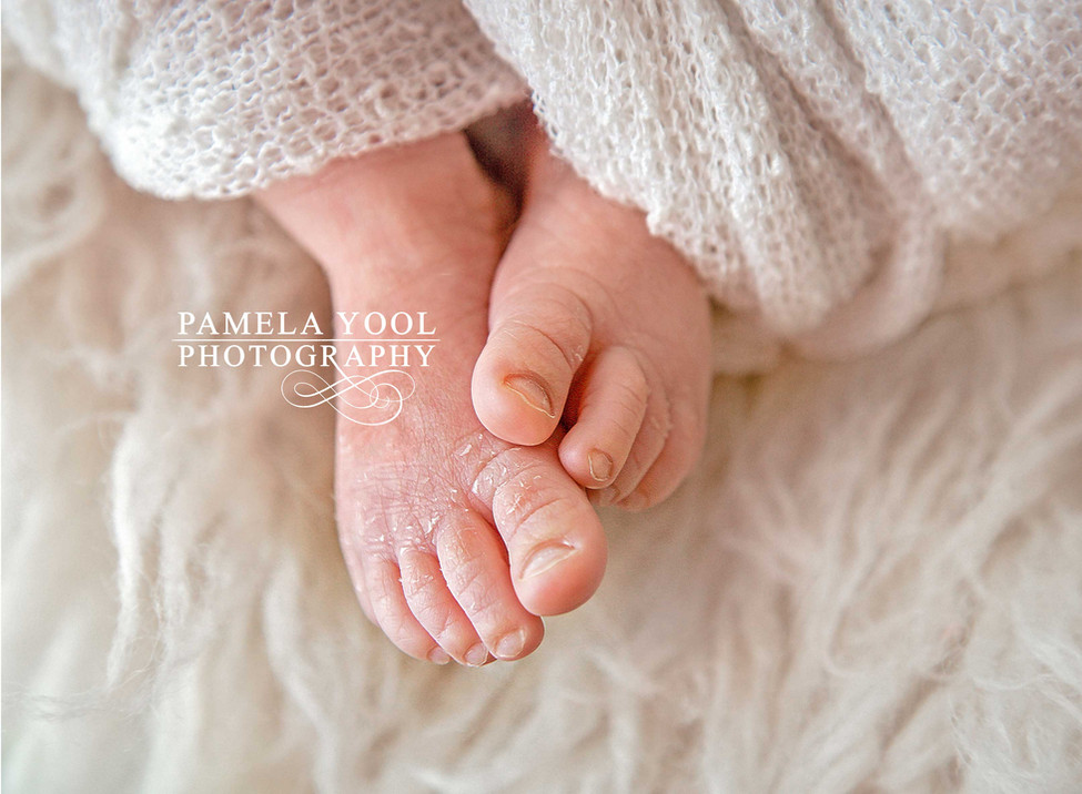 Pamela-Yool-Photography-2336.jpg