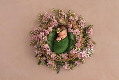 Newborn Baby Girl in flower nest Photography