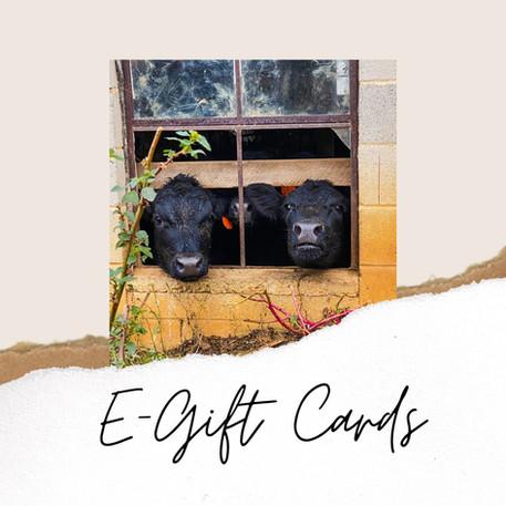 e-gift cards.jpeg