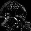 DHG Logo.png