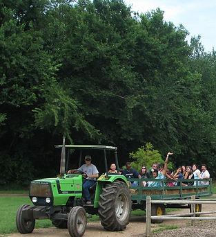 tractor chad (2).jpg