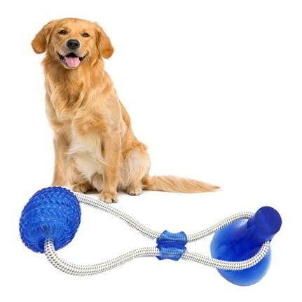 צעצוע נשיכה לכלבים